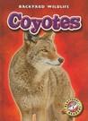 Coyotes (Blastoff! Readers: Backyard Wildlife)