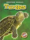 Turtles (Blastoff! Readers: Backyard Wildlife)