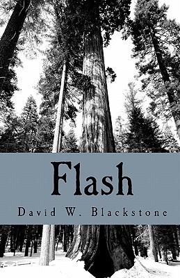 Flash: Collected Short Fiction