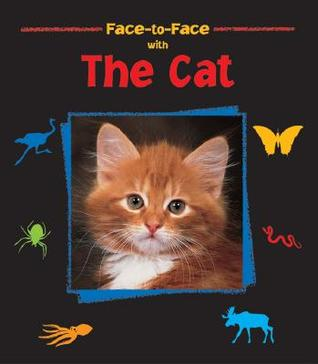 face-to-face-with-the-cat-face-to-face