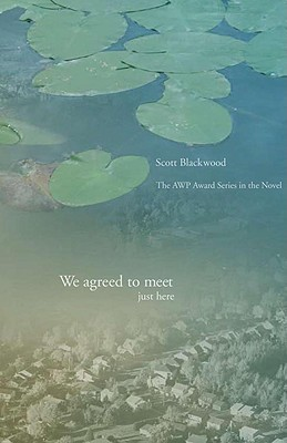 We Agreed to Meet Just Here (AWP Award Series in the Novel)