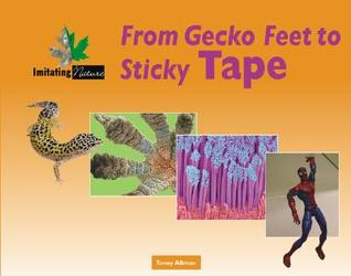 From Gecko Feet to Sticky Tape