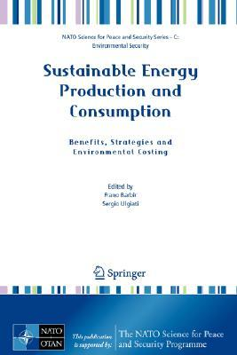 Sustainable Energy Production And Consumption: Benefits, Strategies And Environmental Costing (Nato Science For Peace And Security Series C: Environmental Security)