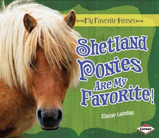 Shetland Ponies are my Favorite
