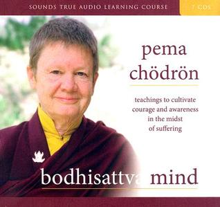 Bodhisattva Mind: Teachings to Cultivate Courage and Awareness in the Midst of Suffering