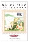 The Puppy Problem (Nancy Drew: Notebooks, #12)