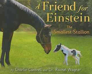 A Friend for Einstein, the Smallest Stallion by Charlie Cantrell