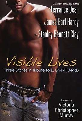Visible Lives by Stanley Bennett Clay