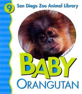 Baby Orangutan San Diego Zoo