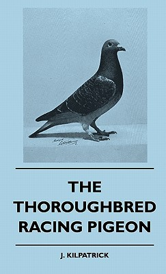 The Thoroughbred Racing Pigeon