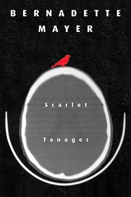 Scarlet Tanager by Bernadette Mayer