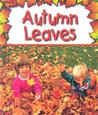 Autumn Leaves by Gail Saunders-Smith