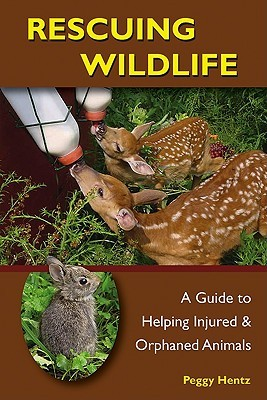 Rescuing Wildlife: A Guide to Helping Injured and Orphaned Animals