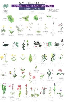 Mac's Field Guide to Mount Rainier National Park: Wild Flowers and Trees