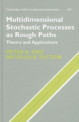 Multidimensional Stochastic Processes as Rough Paths: Theory and Applications