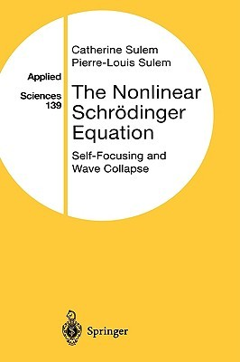 The Nonlinear Schrödinger Equation: Self-Focusing and Wave Collapse