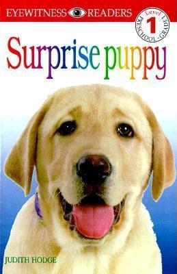 Surprise Puppy