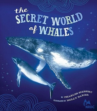 NRDC The Secret World of Whales by Charles Siebert