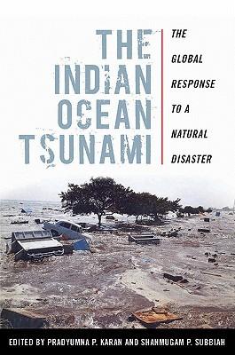 The Indian Ocean Tsunami