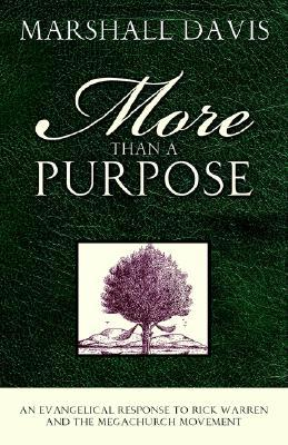 More Than a Purpose, an Evangelical Response to Rick Warren and the Megachurch Movement