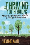 Thriving Youth Groups: Secrets for Growing Your Ministry and Creating a Friendship Culture
