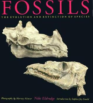 fossils-the-evolution-and-extinction-of-species