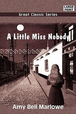 A Little Miss Nobody; or, With the Girls of Pinewood Hall