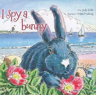 I Spy a Bunny by Judy Dudar