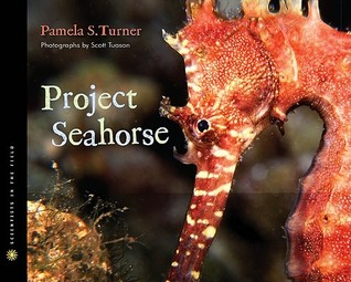 Project Seahorse by Pamela S. Turner