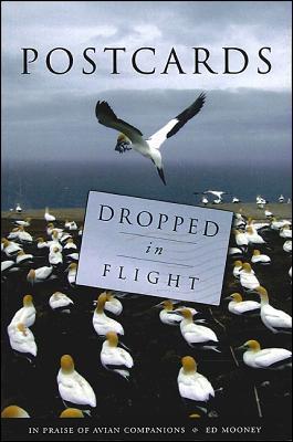 Postcards Dropped in Flight: In Praise of Avian Companions