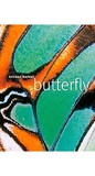 Butterfly by Thomas Marent