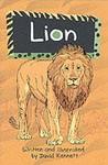 Solo Wildlife: Lion