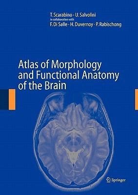 Atlas of Morphology and Functional Anatomy of the Brain
