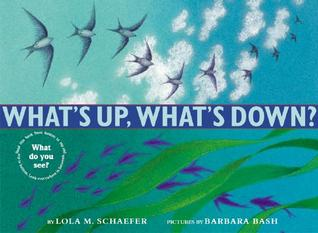 What's Up, What's Down? by Lola M. Schaefer