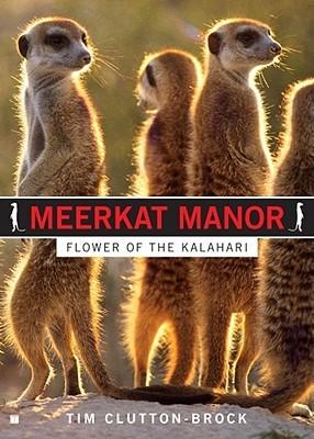 Meerkat Manor by Tim Clutton-Brock