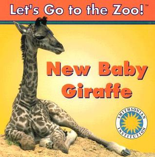 New Baby Giraffe by Jessie Cohen