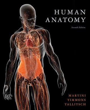 Human Anatomy by Frederic H. Martini
