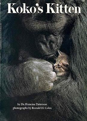 Koko's Kitten by Francine Patterson