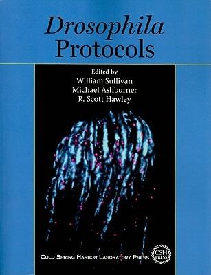 Drosophila Protocols
