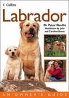Labrador (Collins Dog Owner's Guide)