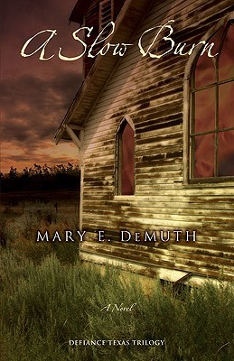 A Slow Burn by Mary E. DeMuth