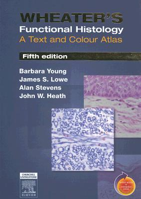 Wheaters functional histology a text and colour atlas by barbara young 881728 fandeluxe Gallery