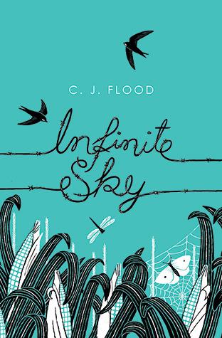 Infinite Sky (Infinite Sky, #1)