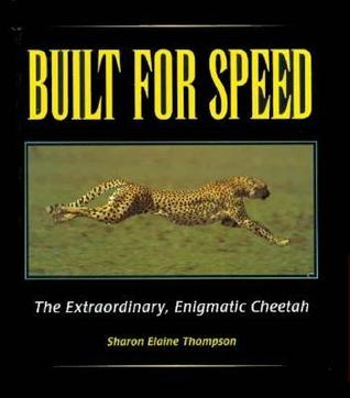 Built for Speed: The Extraordinary, Enigmatic Cheetah