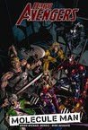 Dark Avengers, Vol. 2 by Brian Michael Bendis