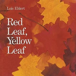 Red leaf, yellow leaf big book by Lois Ehlert