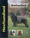 Newfoundland (Pet Love)
