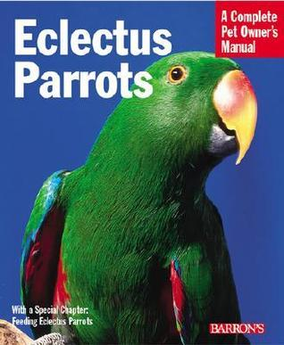 Eclectus Parrots: Everything about Purchase, Care, Feeding, and Housing