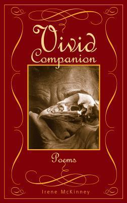 vivid-companion