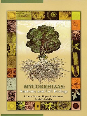 Mycorrhizas: Anatomy and Cell Biology by R. Larry Peterson